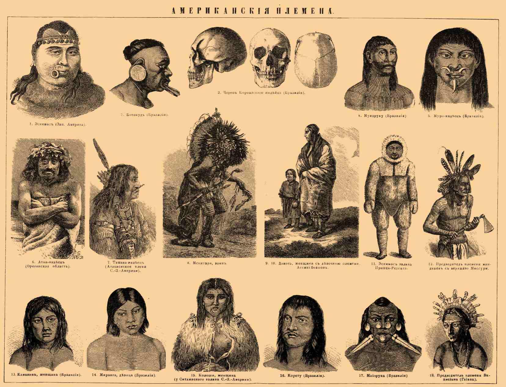 происхождение американских индейцев генное форум Справочная (важная